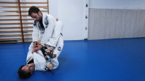 campeon express bjj